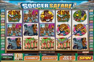 soccersafari